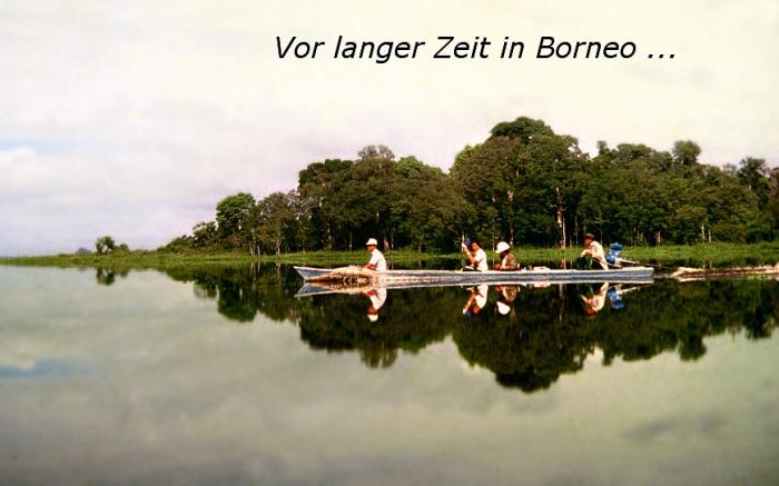 ODS_Borneo_Titel