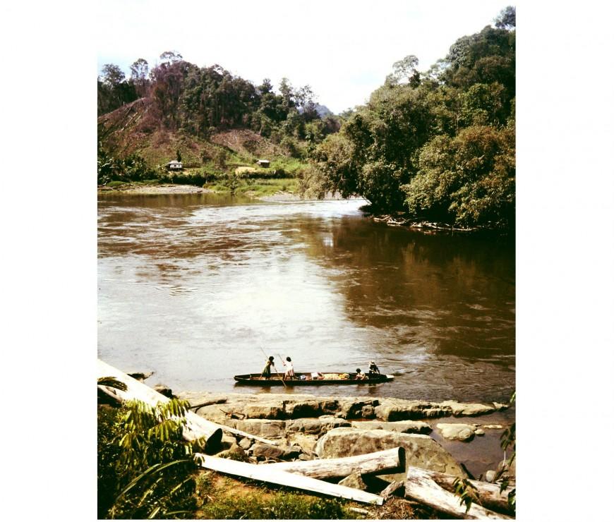 ODS_Borneo_Ulumahakam_060b