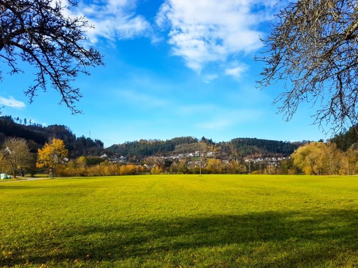 Epfendorf mit der Marienkapelle von Sueden gesehen