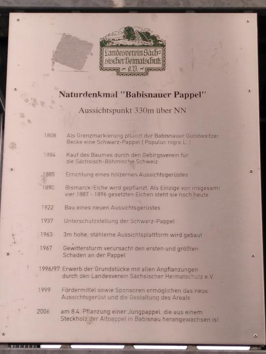 Babisnauer Pappel