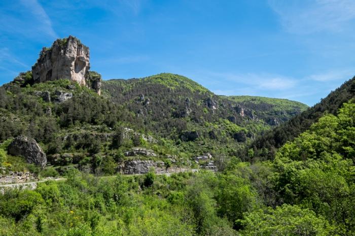 Carcassonne-205