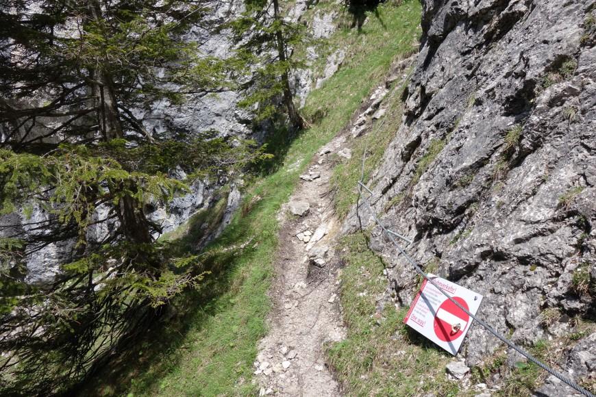 Klettersteig Gelbe Wand : Bilder klettersteig tegelberg wandern