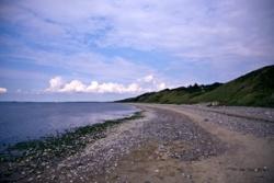 Küstenstreifen am Nordseeküsten-Radweg